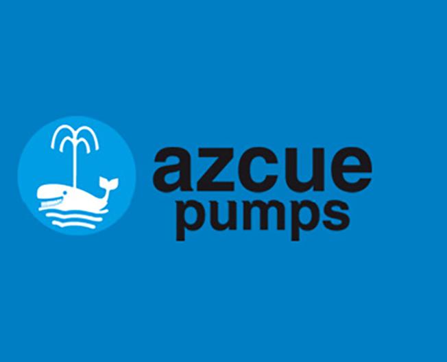 西班牙AZCUE泵